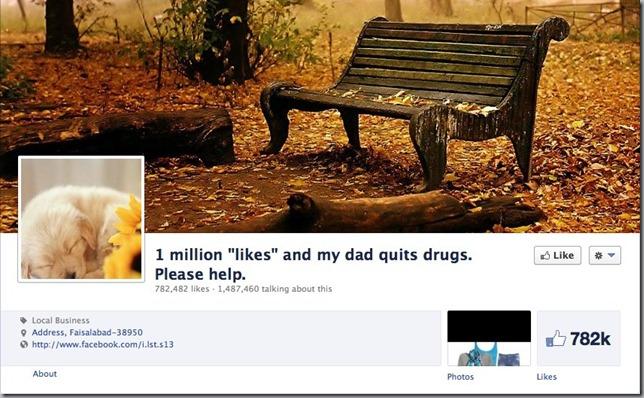 Like Facebook (1)