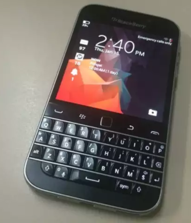 Fin blackberry